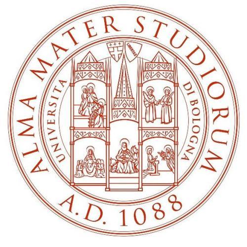阿尔梅利亚大学