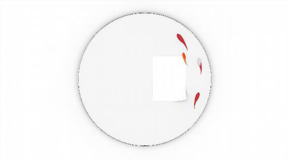 红鲤鱼磁铁