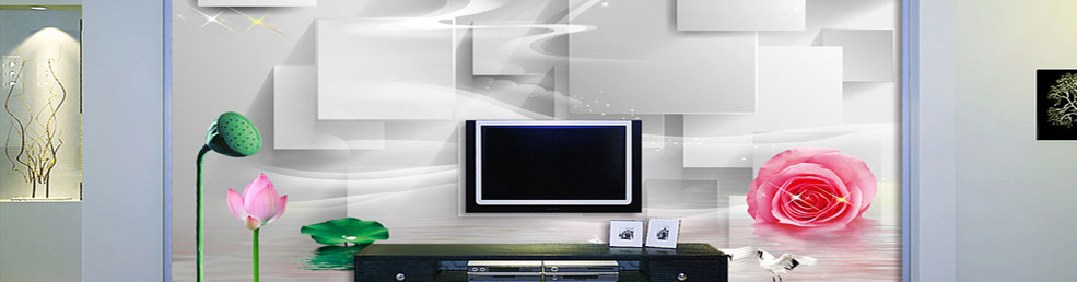 3D电视专题图片