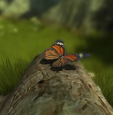 蝴蝶飞飞-交互式3D