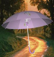 体验式3D雨伞展示解决方案-交互式3D