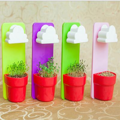 创意植栽云朵花盆