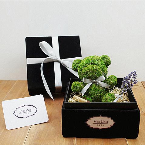 小熊永生花苔藓