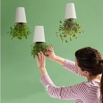 吊挂花盆创意花瓶