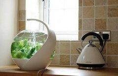 AVO自清洁鱼缸-工业创意设计