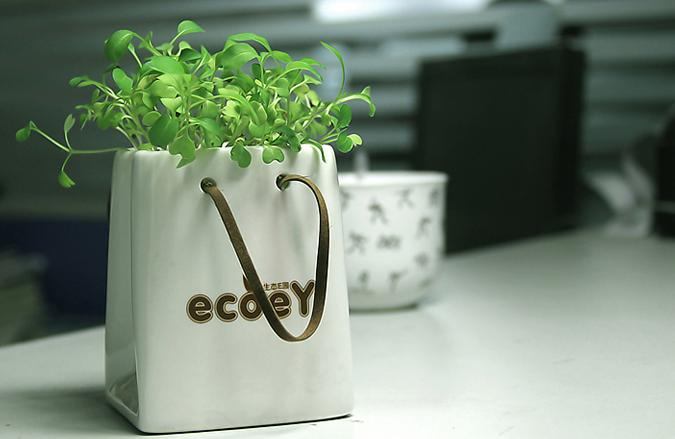 陶瓷纸袋创意植栽 1