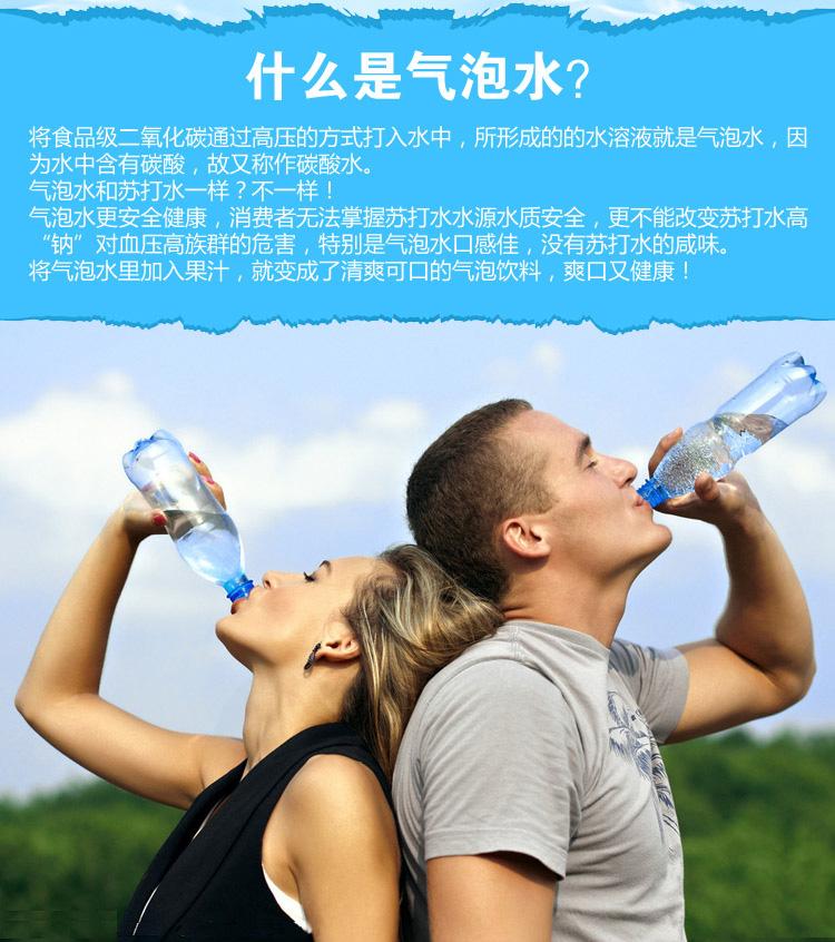 苏打水机家用自制可乐机碳酸饮料机