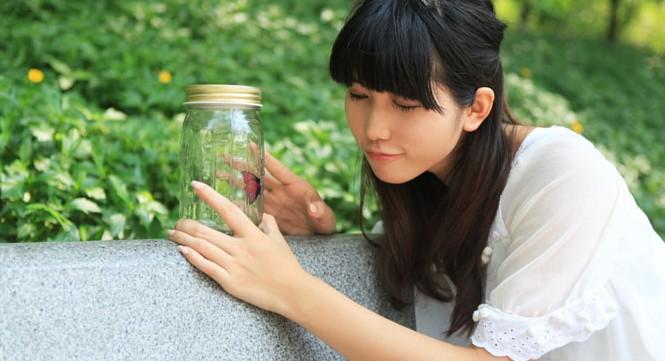 浪漫蝴蝶创意玻璃瓶 3