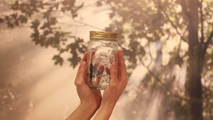 浪漫蝴蝶创意玻璃瓶 2
