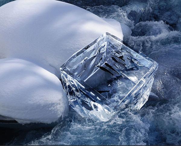 创意冰块鱼缸3